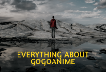 What is gogoanime.io?