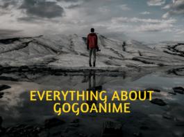 What is gogoanime.io?
